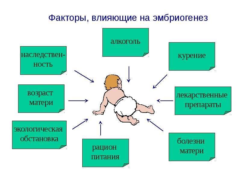 Беременные и внешние факторы