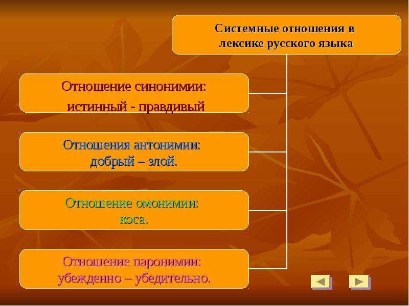 компа гугл системные отношения в лексике русского языка плацентация считается аномалией