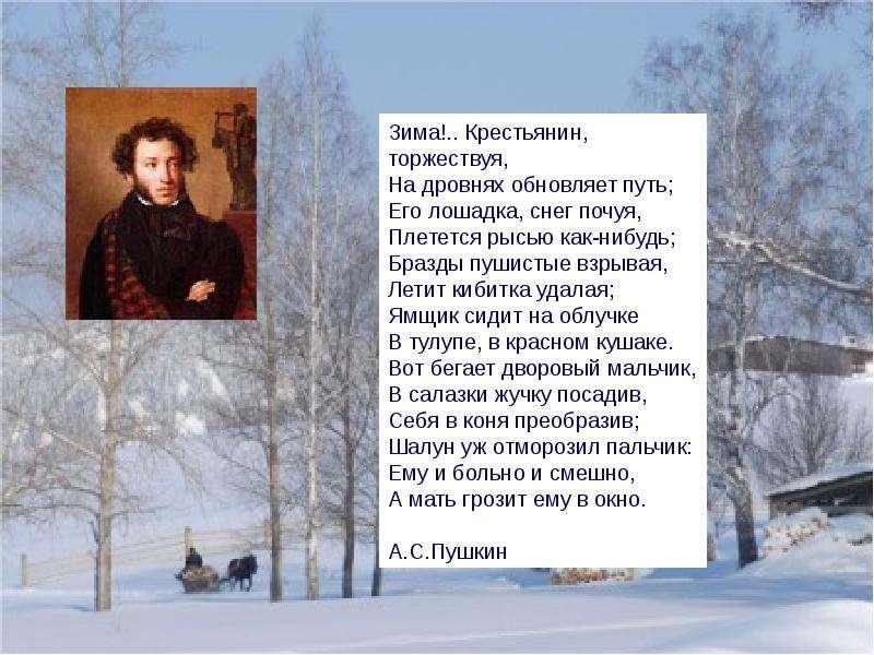 Метки стихотворения пушкина о зиме материала