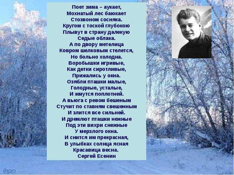 Стихи русских писателей про зиму