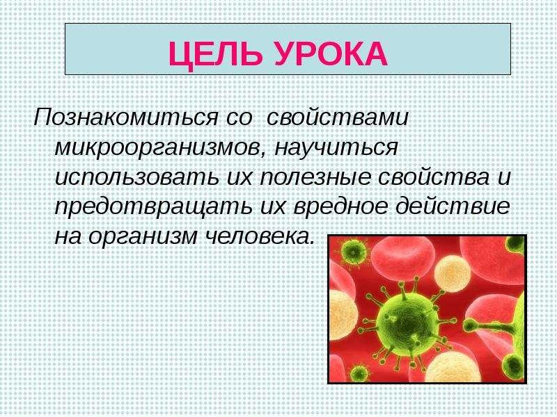 физиология питания презентация 5 класс