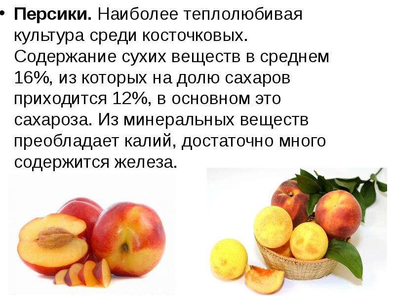 Персики. Наиболее теплолюбивая культура среди косточковых. Содержание сухих веществ в среднем 16%, и