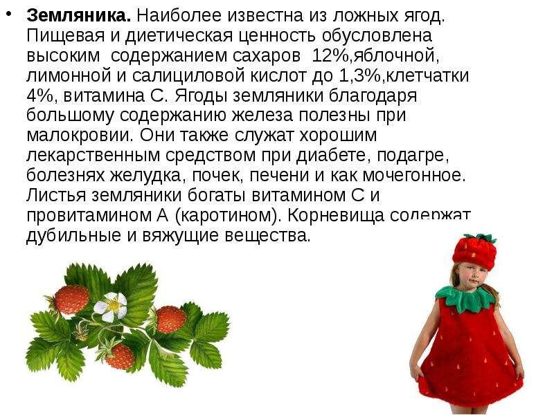 Земляника. Наиболее известна из ложных ягод. Пищевая и диетическая ценность обусловлена высоким соде