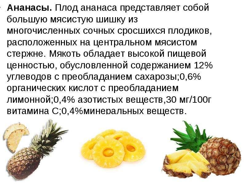 Ананасы. Плод ананаса представляет собой большую мясистую шишку из многочисленных сочных сросшихся п