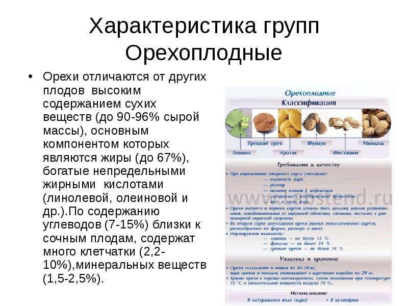 Характеристика групп Орехоплодные Орехи отличаются от других плодов высоким содержанием сухих вещест