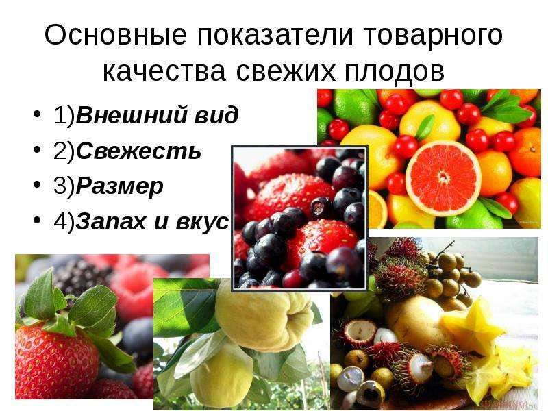 Основные показатели товарного качества свежих плодов 1)Внешний вид 2)Свежесть 3)Размер 4)Запах и вку