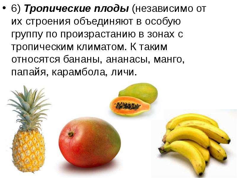 6) Тропические плоды (независимо от их строения объединяют в особую группу по произрастанию в зонах