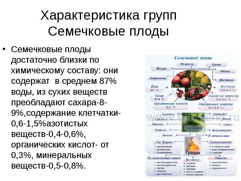 Характеристика групп Семечковые плоды Семечковые плоды достаточно близки по химическому составу: они