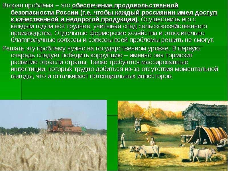 Вторая проблема – это обеспечение продовольственной безопасности России (т. е. чтобы каждый россияни