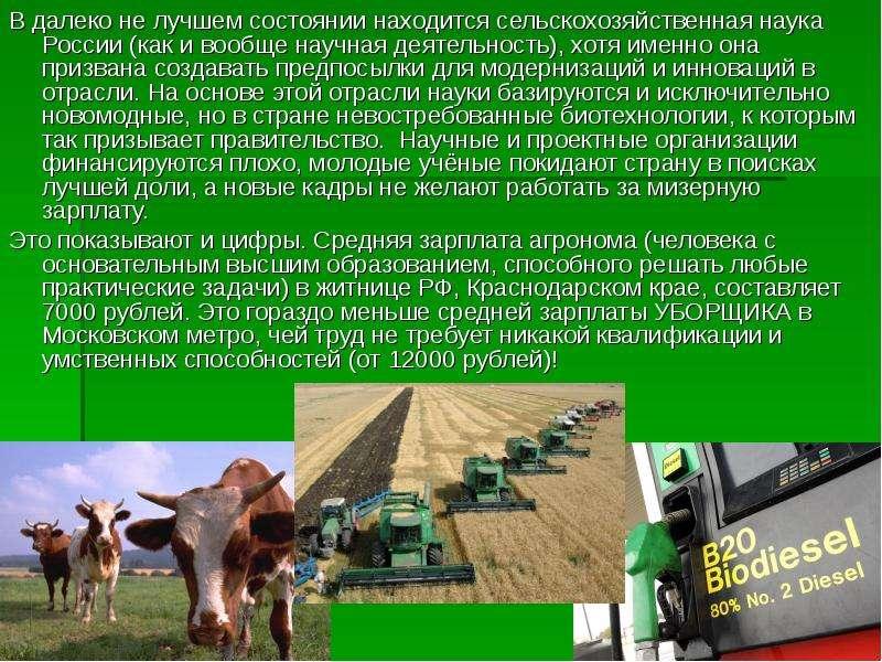 В далеко не лучшем состоянии находится сельскохозяйственная наука России (как и вообще научная деяте