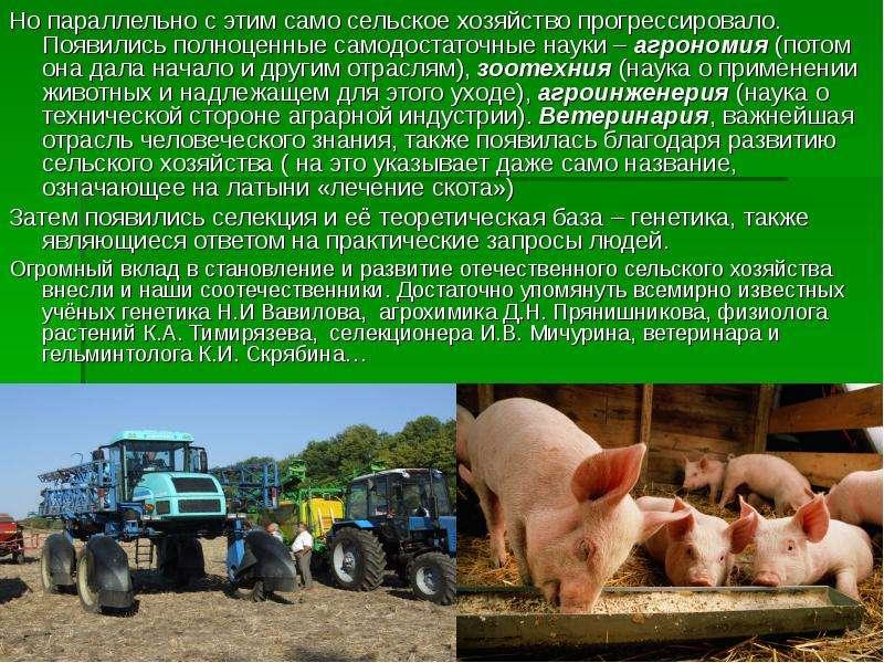 Но параллельно с этим само сельское хозяйство прогрессировало. Появились полноценные самодостаточные