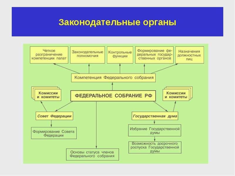 Законодательные органы