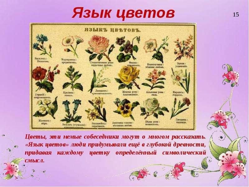 Цветы и их значения с