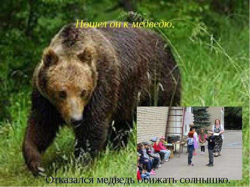 Пошел он к медведю.