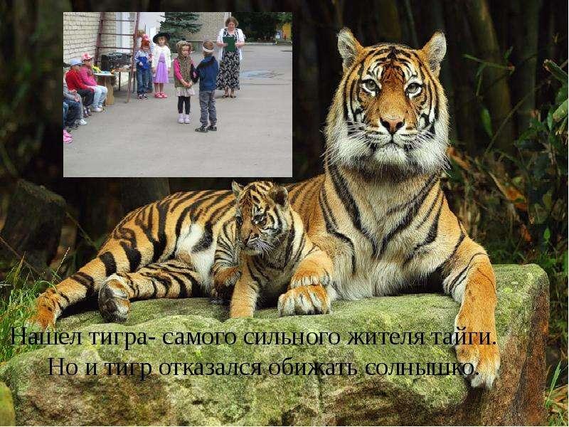 Проект «В гости к солнышку» Воспитатель: Чернова Е. А., слайд 7