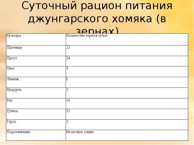 Суточный рацион питания джунгарского хомяка (в зернах)