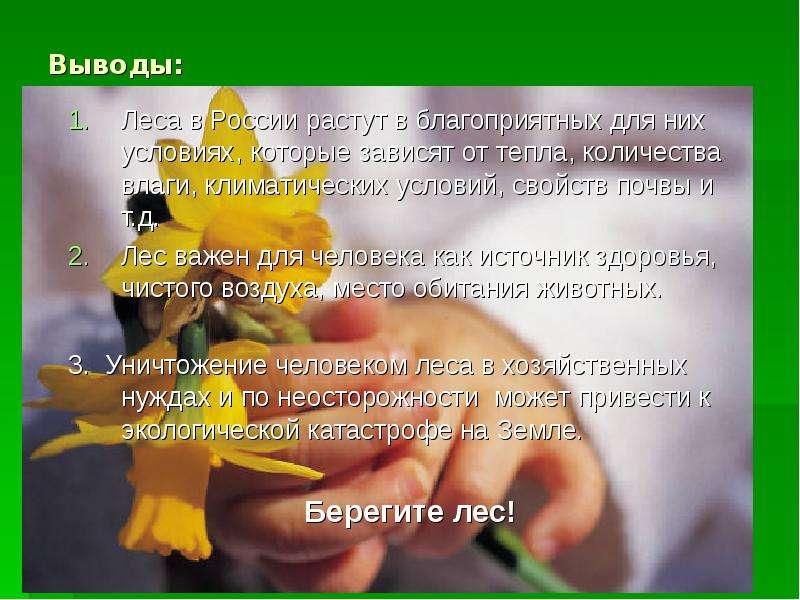 Выводы: Леса в России растут в благоприятных для них условиях, которые зависят от тепла, количества