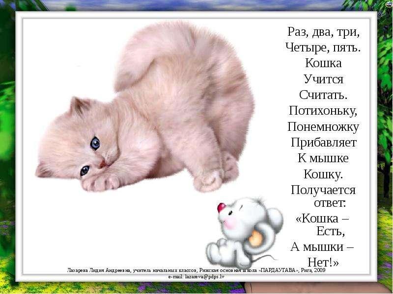 Прикольные стихи к подарку кошка 98