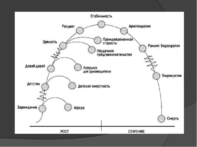 Адизес жизненный цикл организации скачать pdf