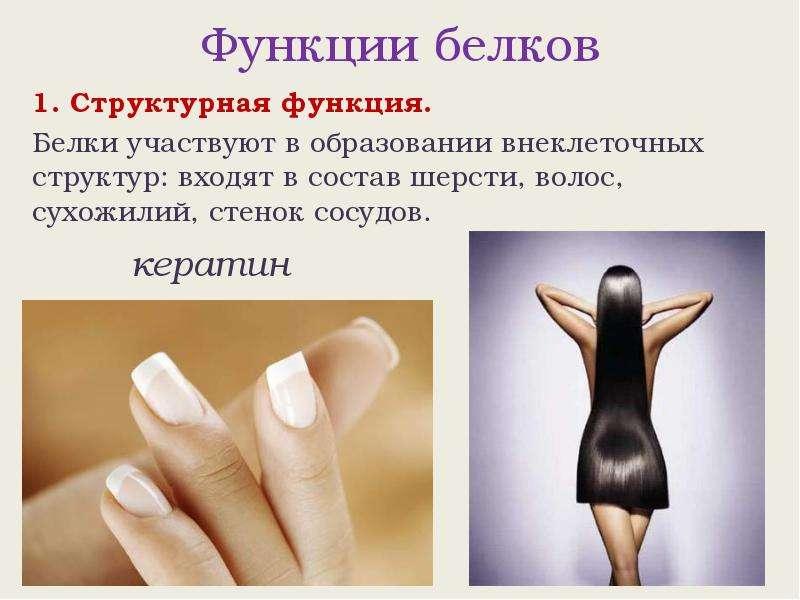 какую функцию в шампуне выполняют кератины