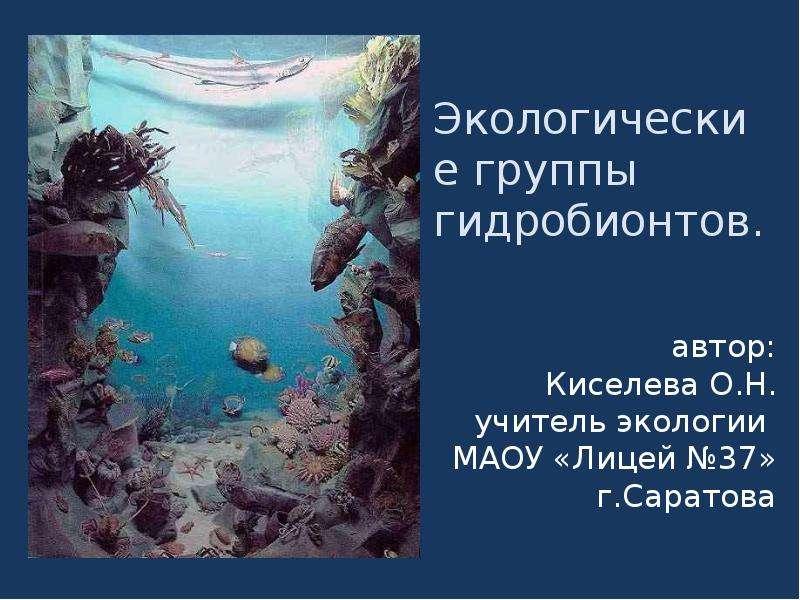Презентация Экологические группы гидробионтов.