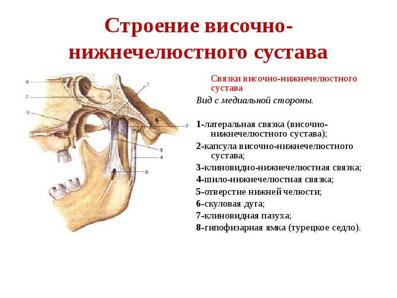 болит височно нижнечелюстным суставом