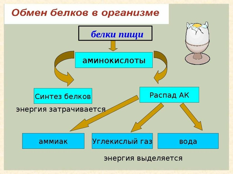 Обмен и размен