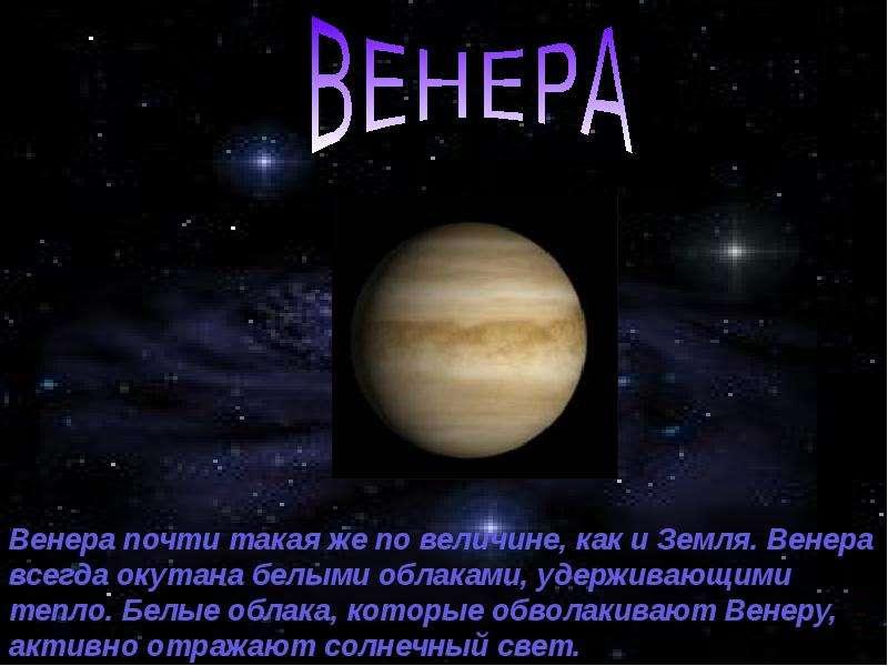 venera-muzhchini-v-sekstile-s-hironom-zhenshini