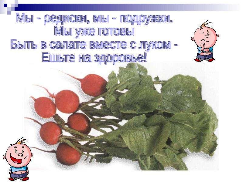 Поздравление с овощами на день рождения про редиску разрушить нас
