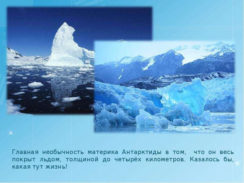 какие времена года в антарктиде