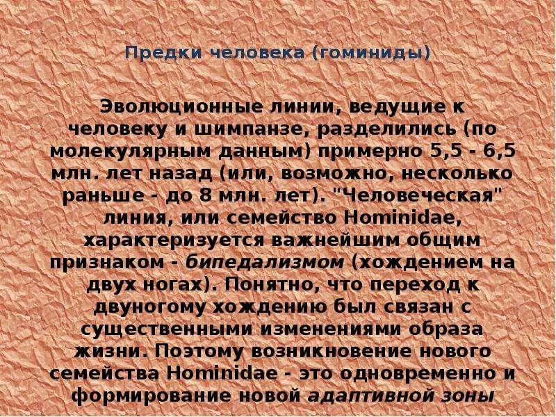 Предки человека (гоминиды)