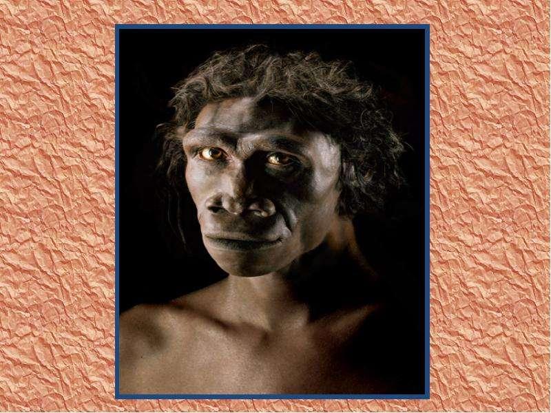 На тему Происхождение и эволюция человека, слайд 31