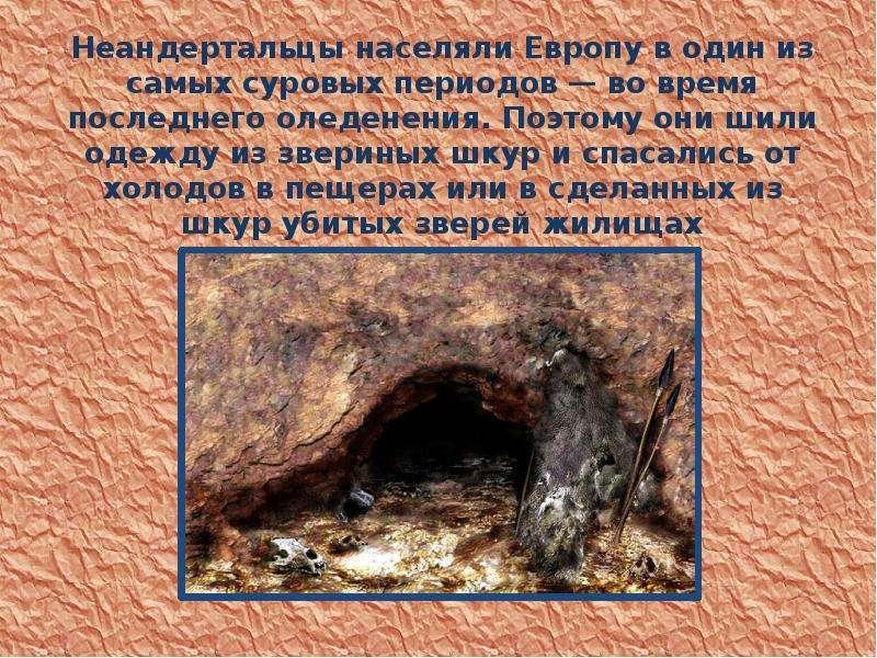 Неандертальцы населяли Европу в один из самых суровых периодов — во время последнего оледенения. Поэ