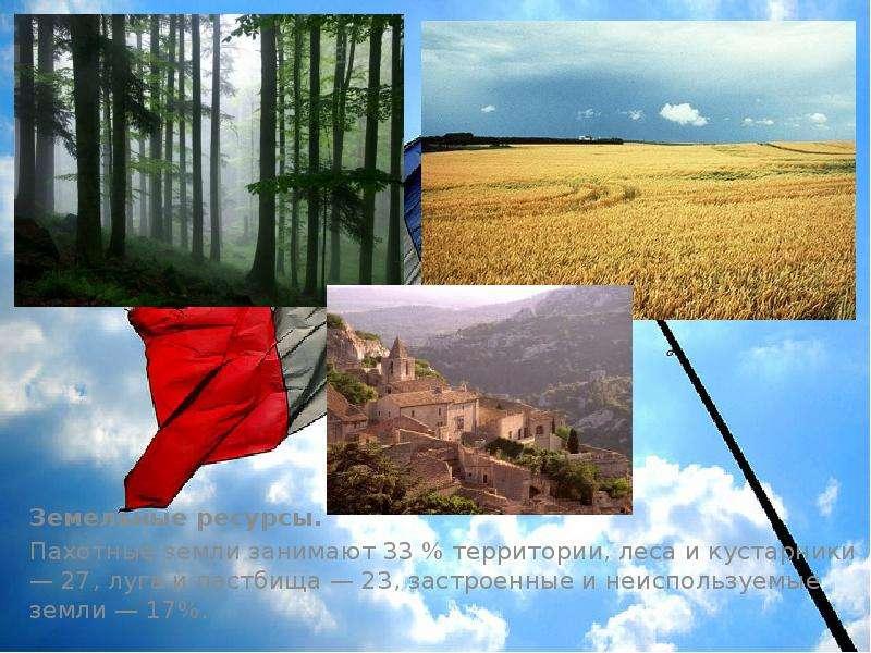 Земельные ресурсы. Земельные ресурсы. Пахотные земли занимают 33 % территории, леса и кустарники — 2