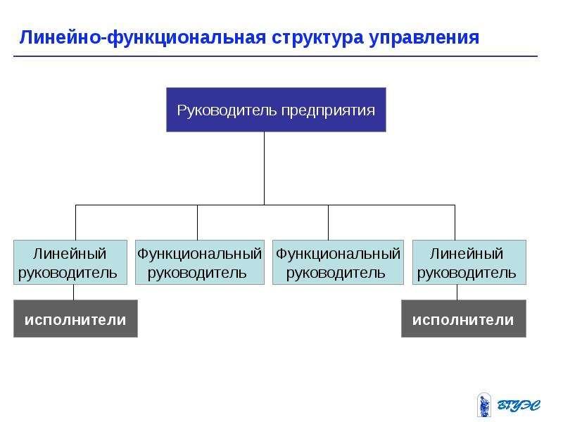 модель линейно-функциональной структуры управления видеоролик, котором