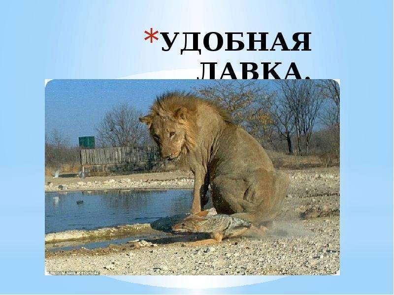 УДОБНАЯ ЛАВКА.