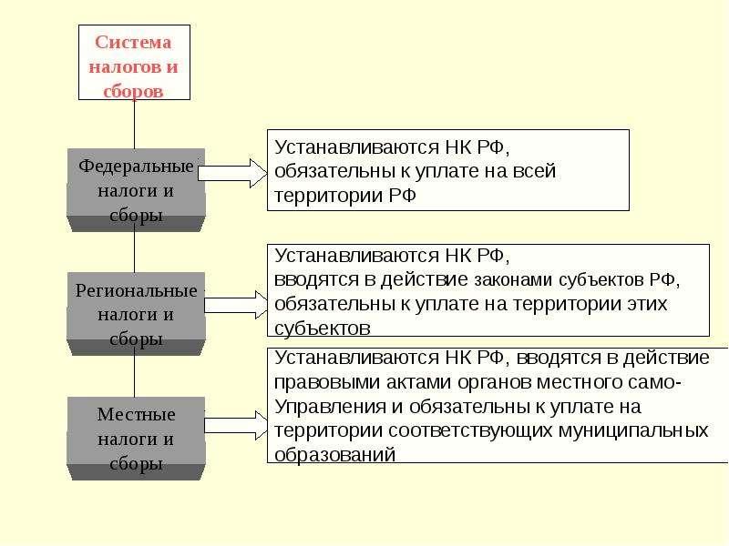 Таблица налог сбор пошлина