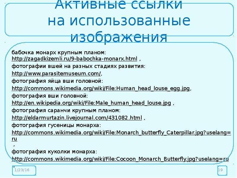 Активные ссылки на использованные изображения бабочка монарх крупным планом: , фотографии вшей на ра