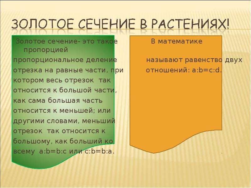 Золотое сечение- это такое В математике пропорцией Золотое сечение- это такое В математике пропорцие