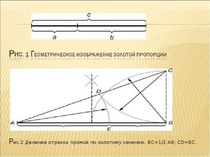 Рис. 2 Деление отрезка прямой по золотому сечению. ВС=1/2 АВ; CD=ВС. Рис. 2 Деление отрезка прямой п