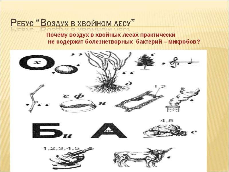 Работу выполнила: Маслова Лидия Руководитель: Башарина Наталья Владимировна, слайд 23