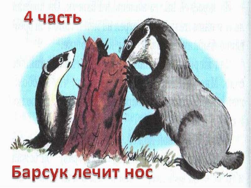 паустовский барсучий нос читать с картинками