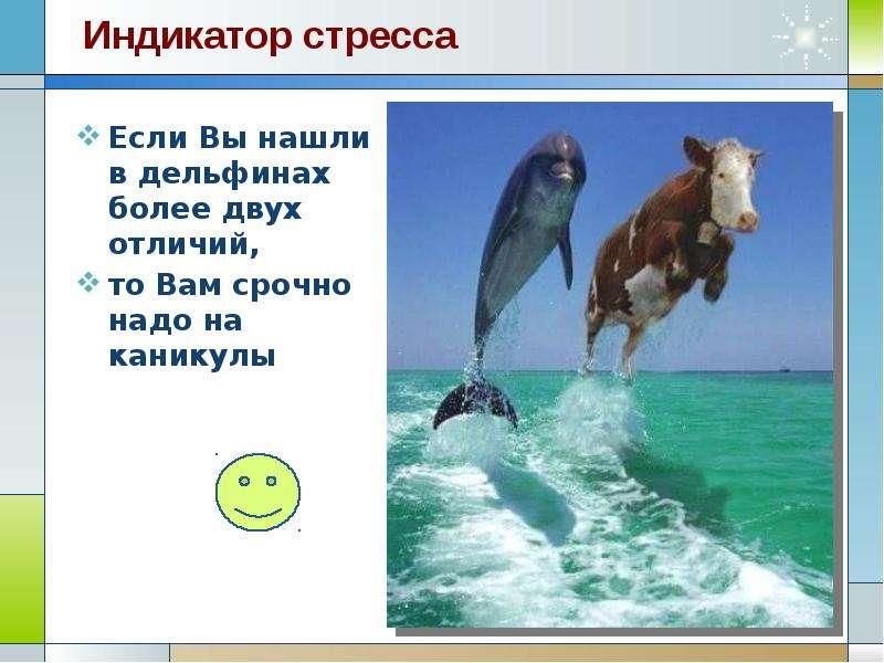 Если Вы нашли в дельфинах более двух отличий, Если Вы нашли в дельфинах более двух отличий, то Вам с
