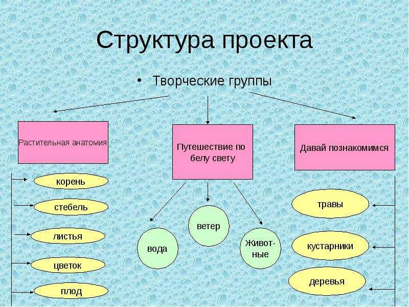 Структура проекта Творческие группы