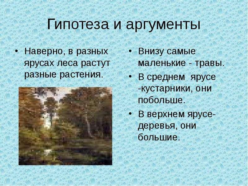 Гипотеза и аргументы Наверно, в разных ярусах леса растут разные растения.
