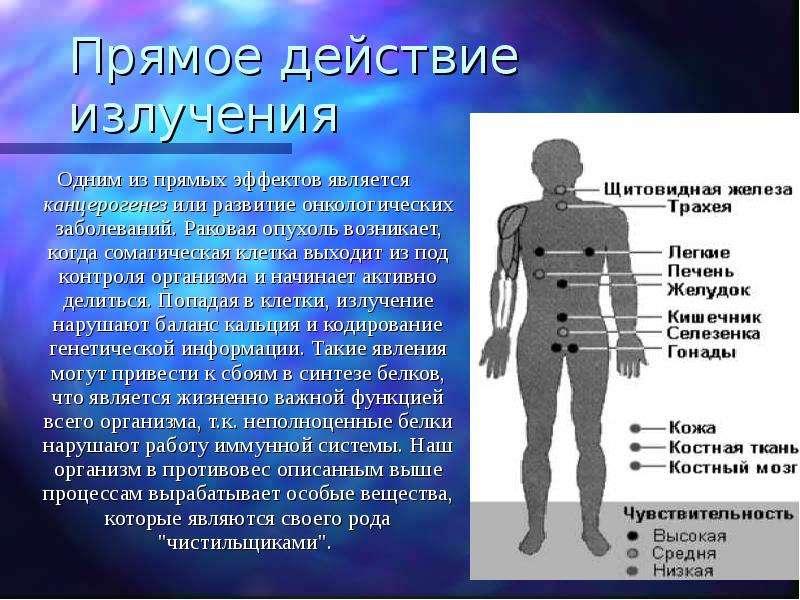 Прямое действие излучения Одним из прямых эффектов является канцерогенез или развитие онкологических