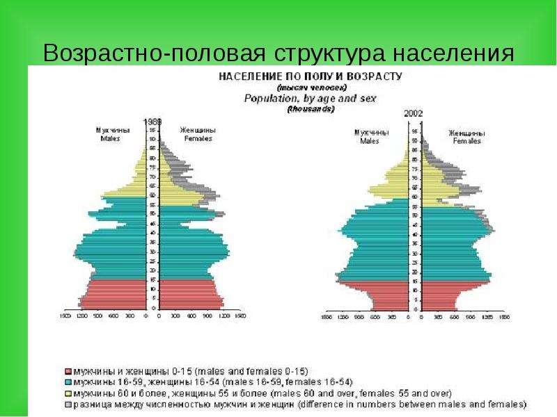 Возрастно-половая структура населения