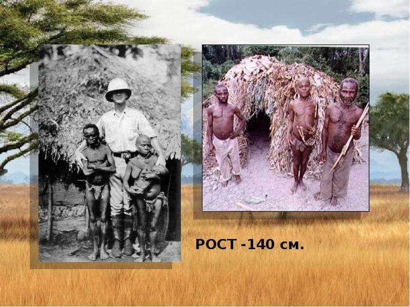 По географии Население Африки, слайд 16