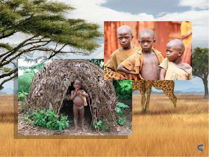 По географии Население Африки, слайд 17
