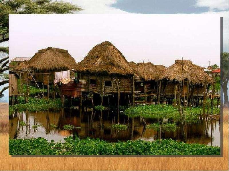 По географии Население Африки, слайд 21